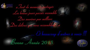 Voeux-Amplitude-2015